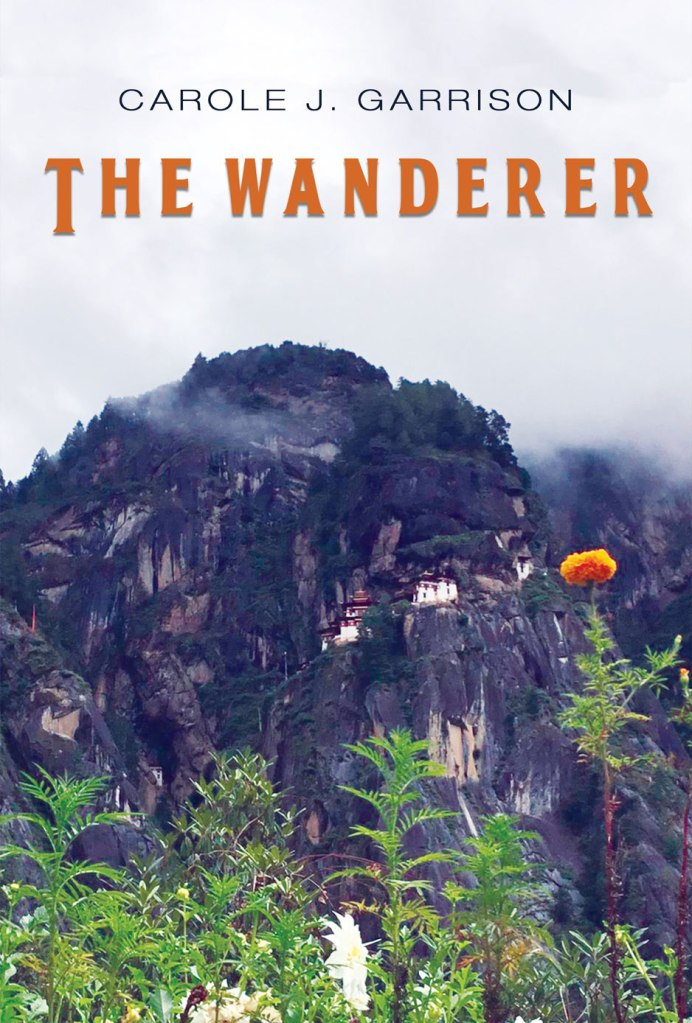 THE WANDERER COVER